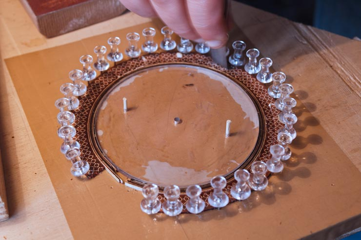 Assembly of the rosette